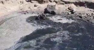 Pollution inexpliquée sur la côte atlantique (Video)